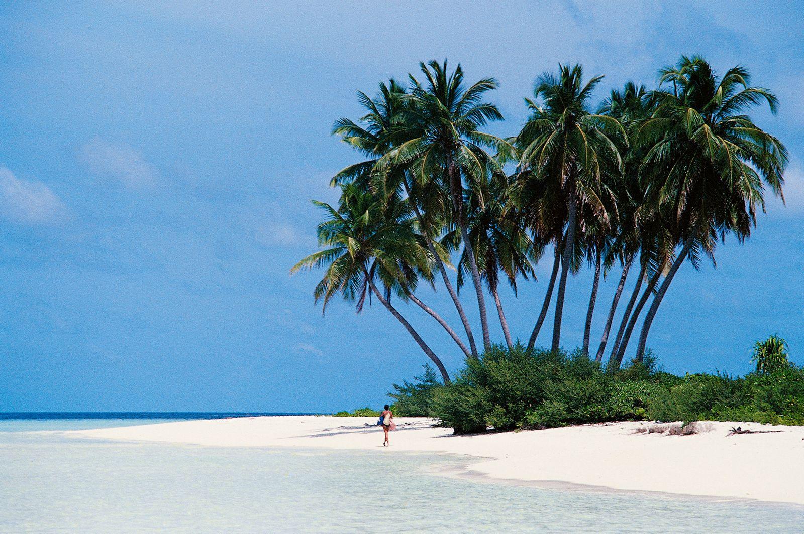 Tropical beach, South Male Atoll