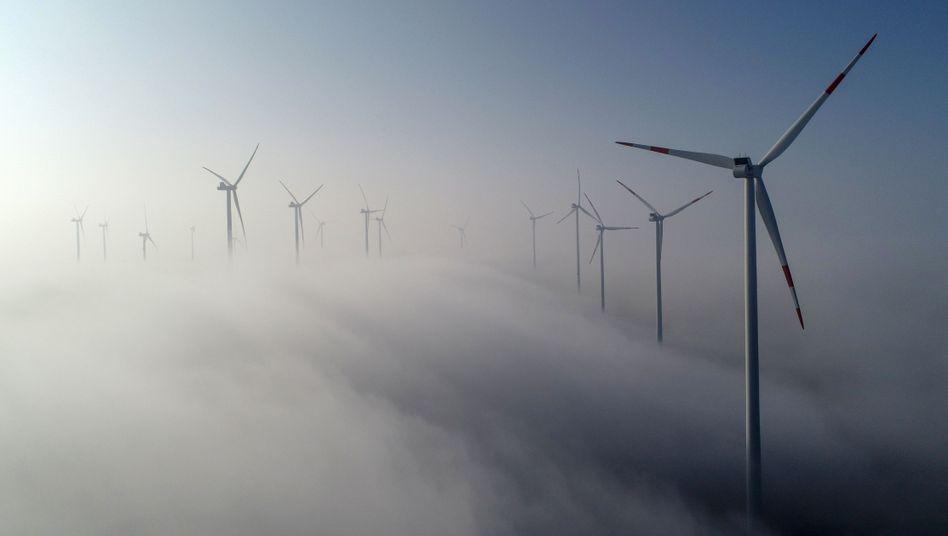 Windenergieanlagen in Brandenburg: Grüner Strom ist die Voraussetzung