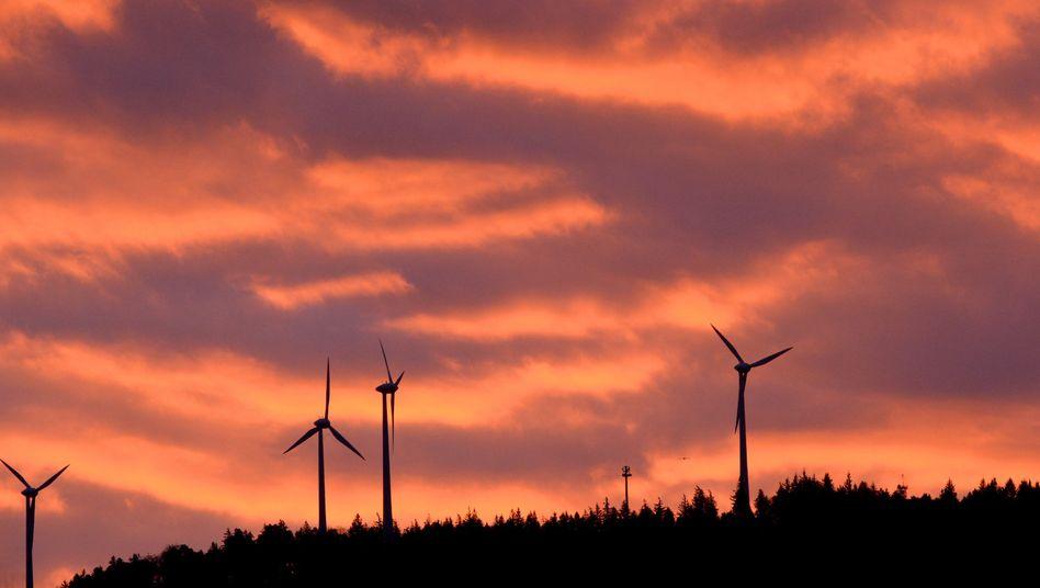 Windräder in Freiburg: Zahlen die Bürger zu viel für die Förderung erneuerbarer Energien?
