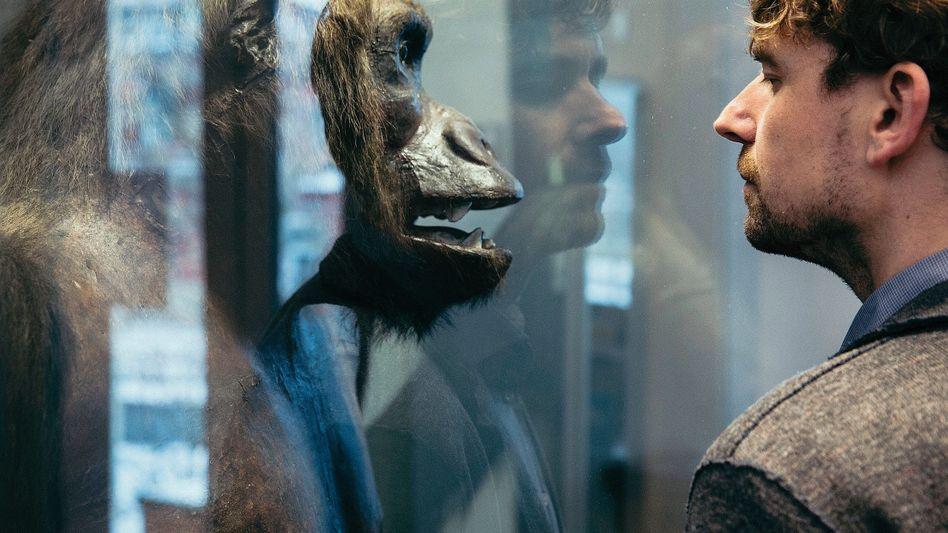 Genetiker Krause im Phyletischen Museum in Jena: »Die Evolutionsgeschichte musste neu geschrieben werden«