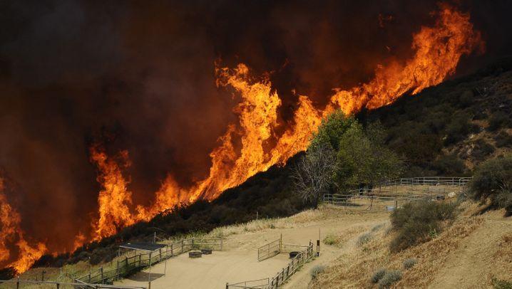 Südkalifornien: Kampf gegen ein Flammenmeer