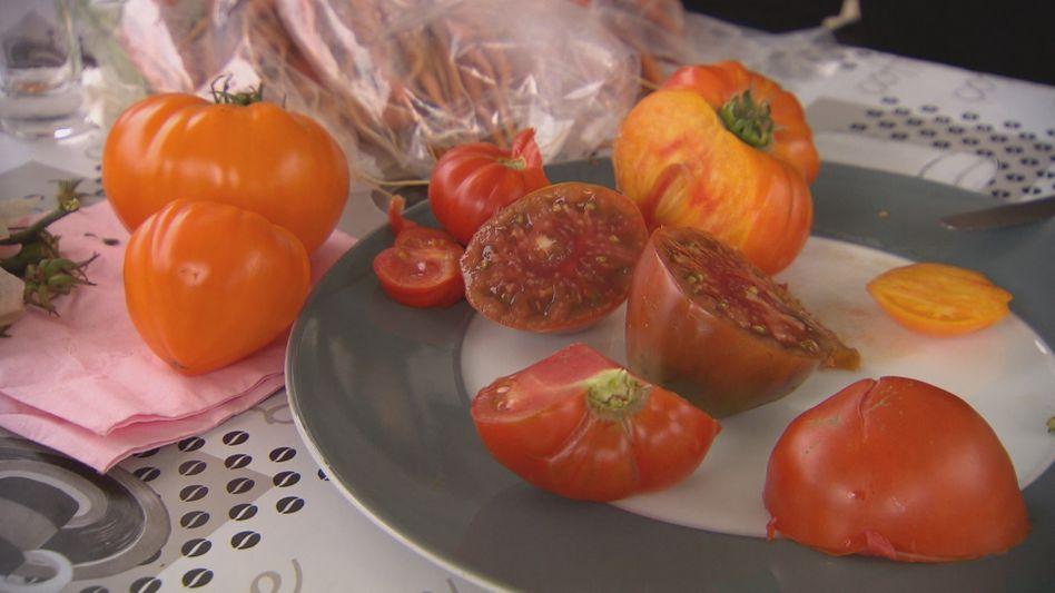 Wie muss eine Tomate aussehen?
