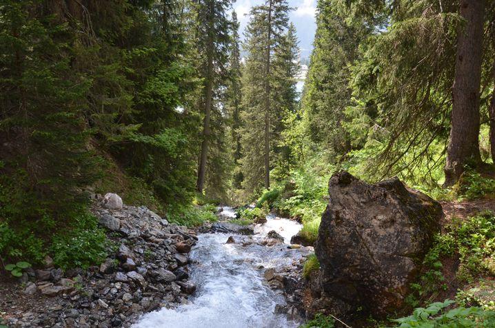 Rauschender Bach (Archivbild): Segensreiche Wirkung von Wasserwirbeln?