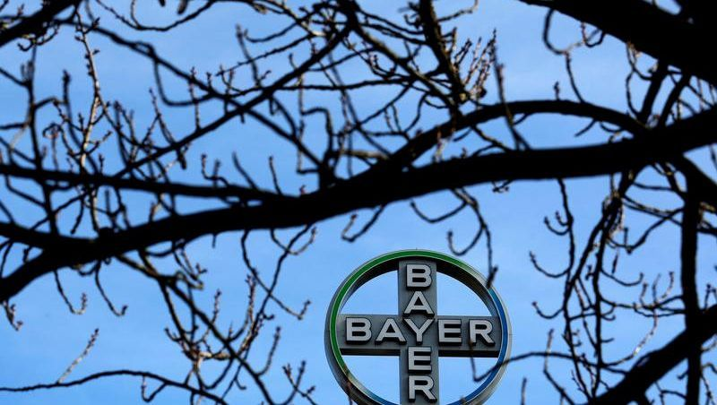 Bayer-Logo in Wuppertal