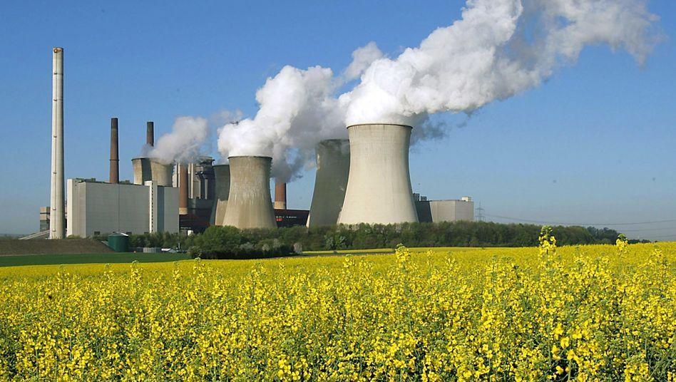 Braunkohlekraftwerk Neurath (Archivfoto)