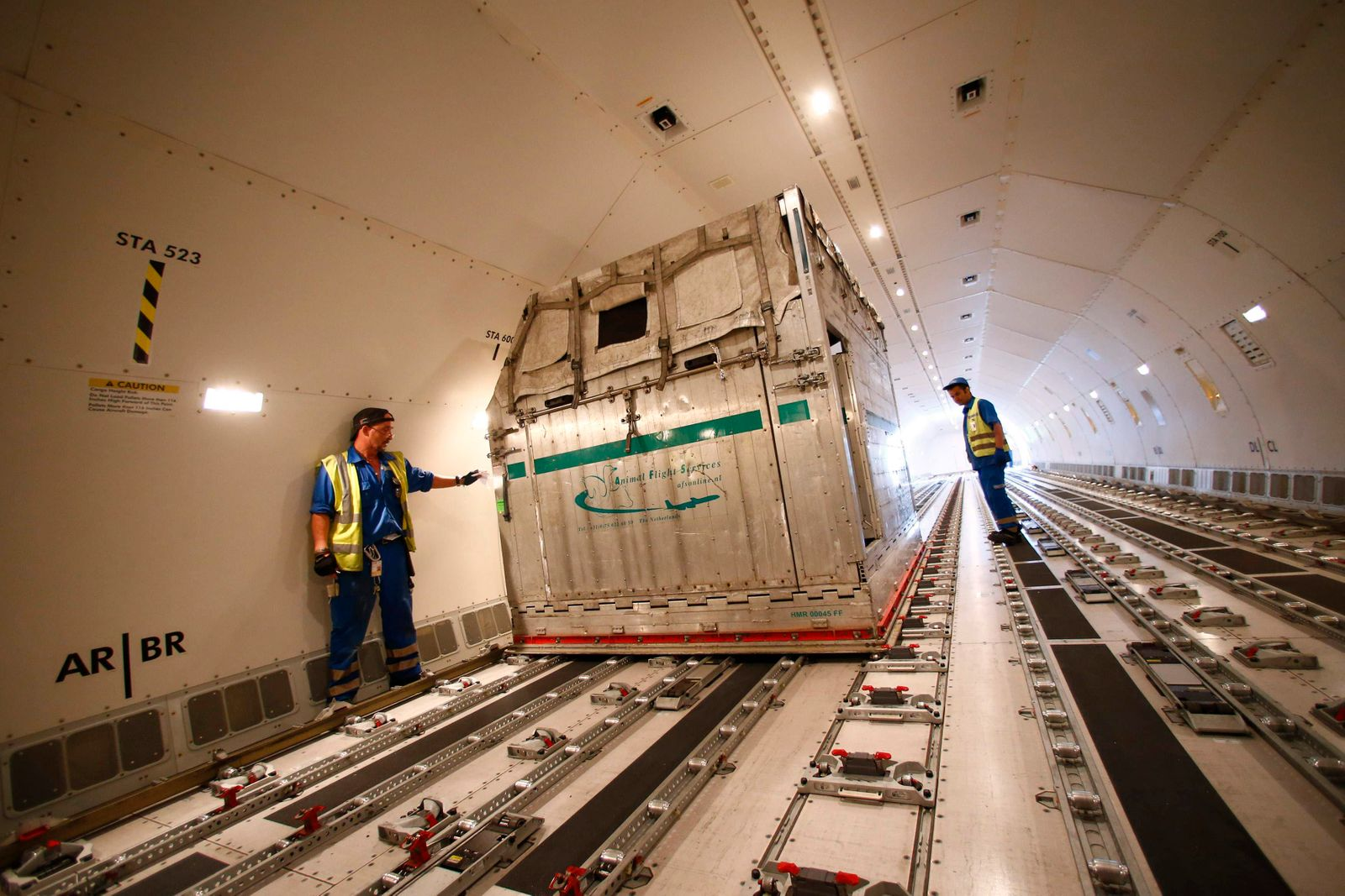 Workers move an air container carrying horses at Fraport airport