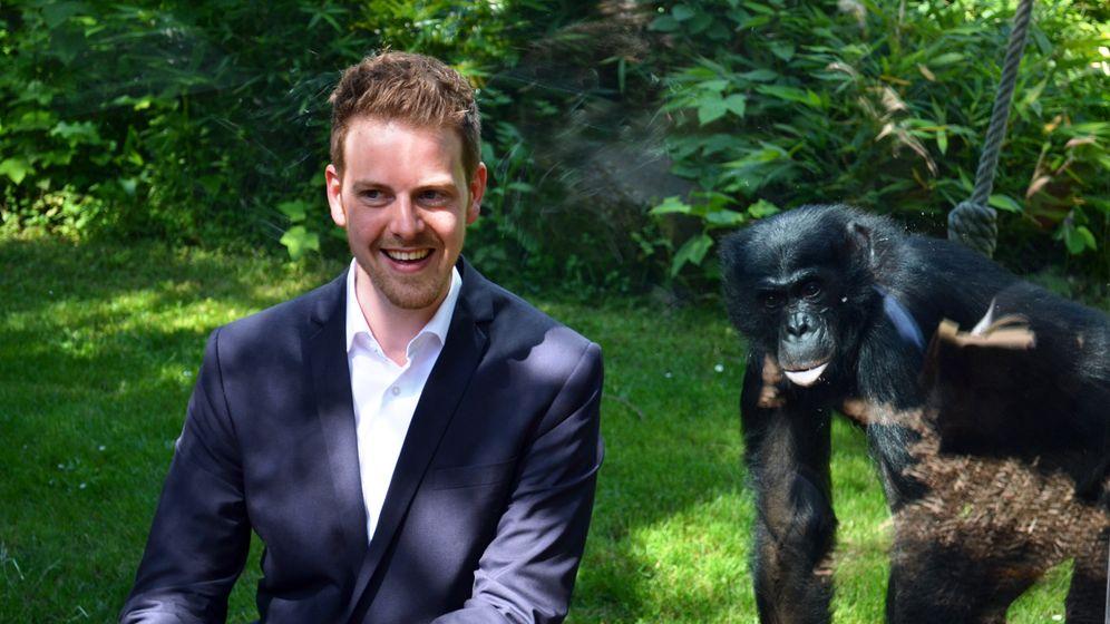 Tierische Karrierestrategien: Aufsteigen wie die Affen