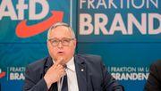 Brandenburger AfD-Fraktionsvize klagt über fehlende Unterstützung