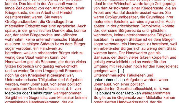 Plagiat oder nicht?: Auszüge aus der Dissertation von Frank Steffel