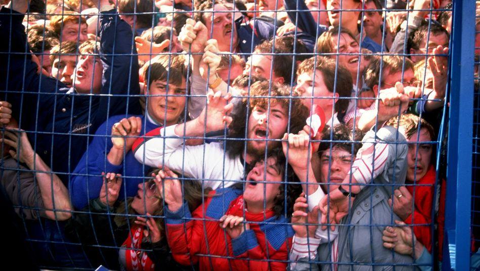 Tragödie im Hillsborough-Stadion: 96 Fans gestorben