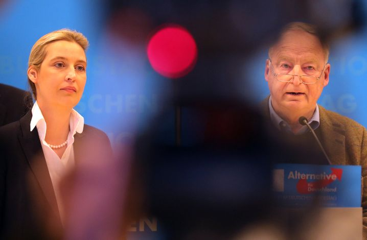 Alice Weidel, Fraktionsvorsitzende der AfD