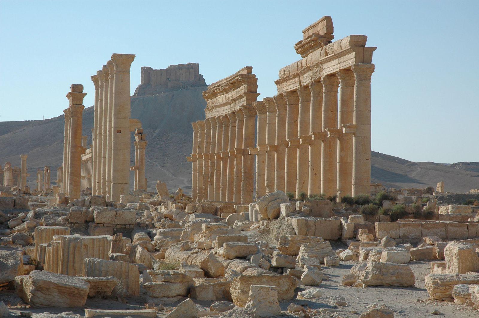 Syrien/ Palmyra