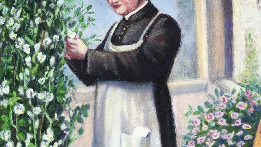 Pater Mendel War seine Entdeckung ein Zufallstreffer?