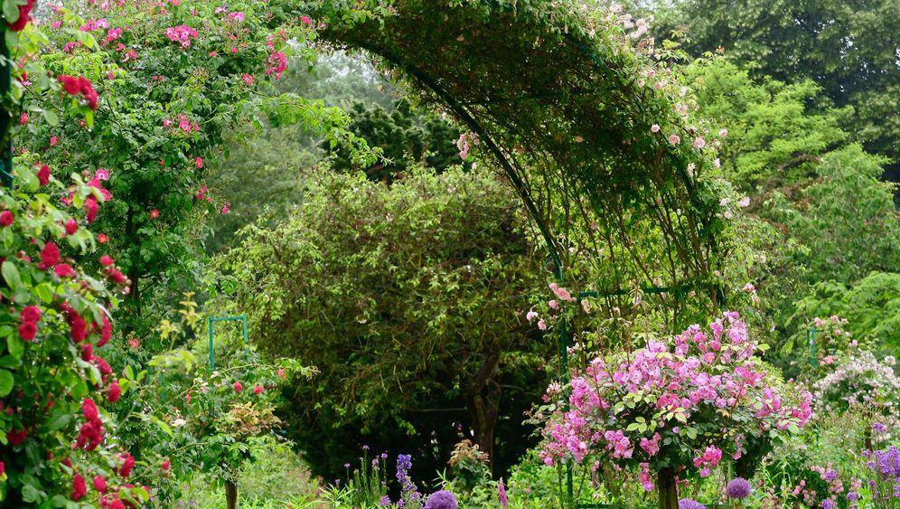Normandie: Von Monets Garten bis zum Barockschloss