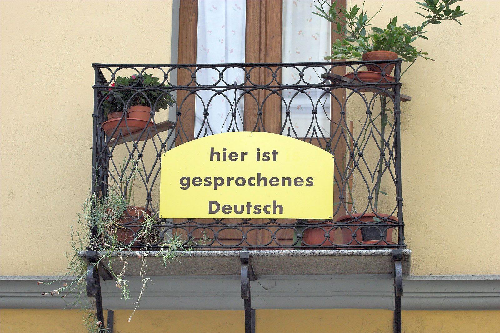 EINMALIGE VERWENDUNG Zwiebelfisch / Gesprochenes Deutsch