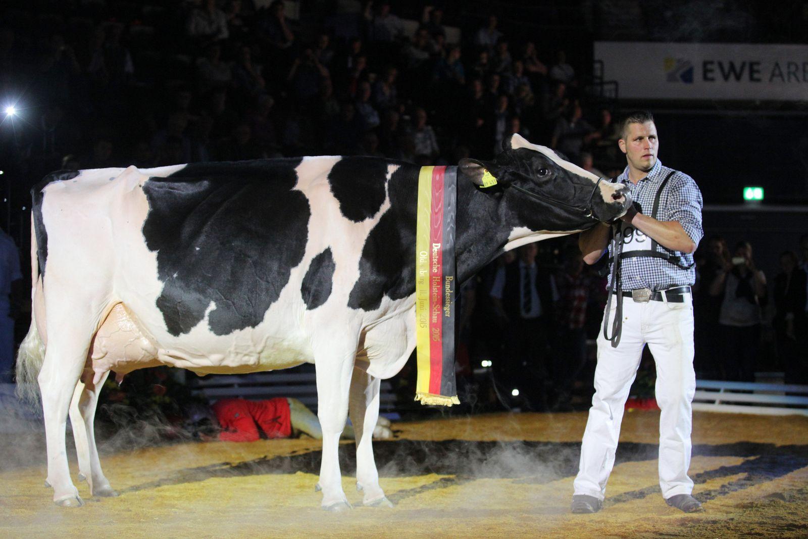 Deutsche Holstein-Schau