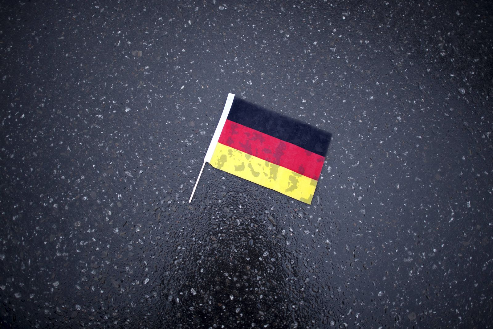EINMALIGE VERWENDUNG Deutschlandähnchen/ Demo/ Populismus/ Straße/ Deutschland