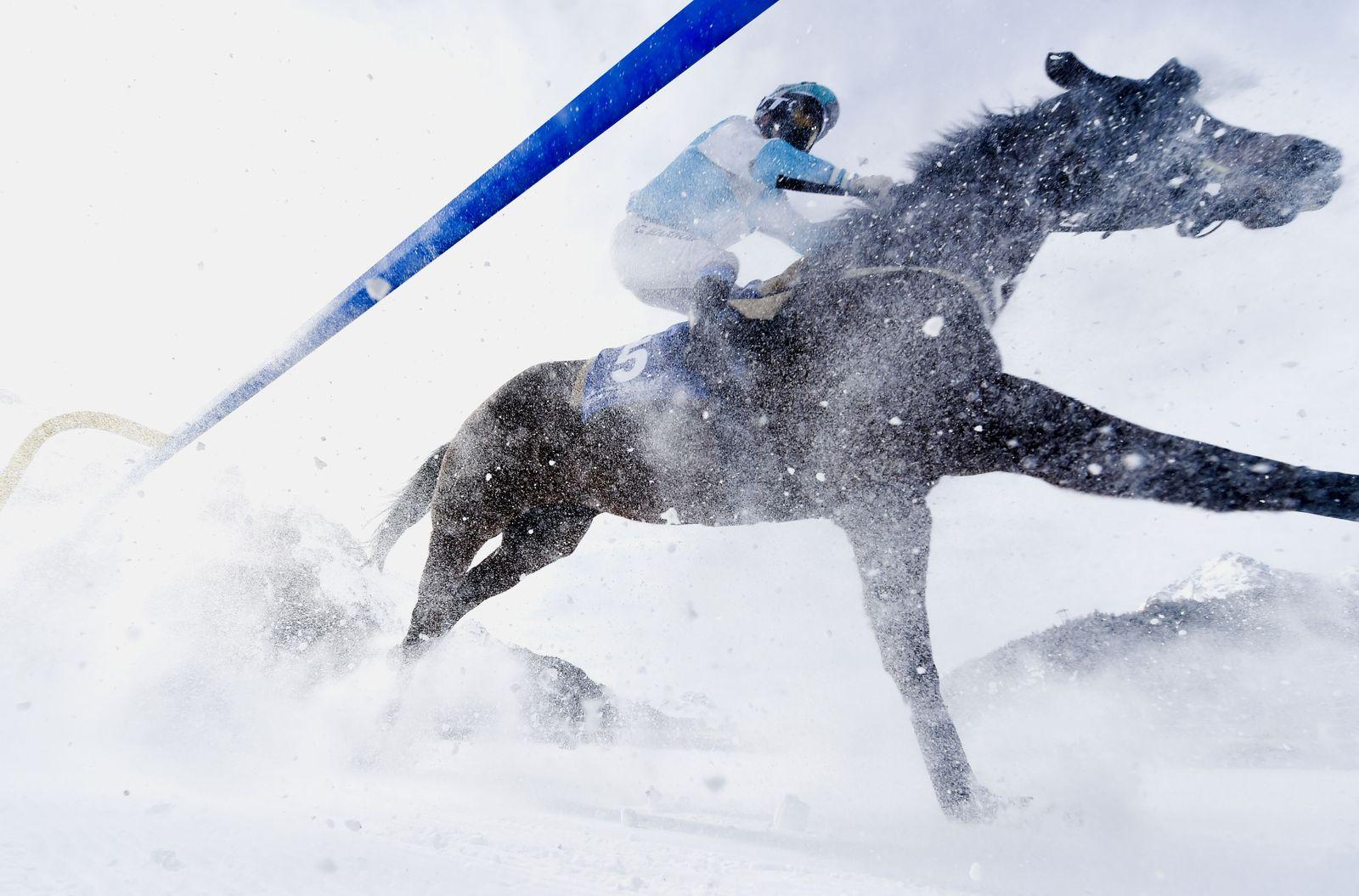 White Turf races in St. Moritz, St Moritz, Switzerland - 16 Feb 2020