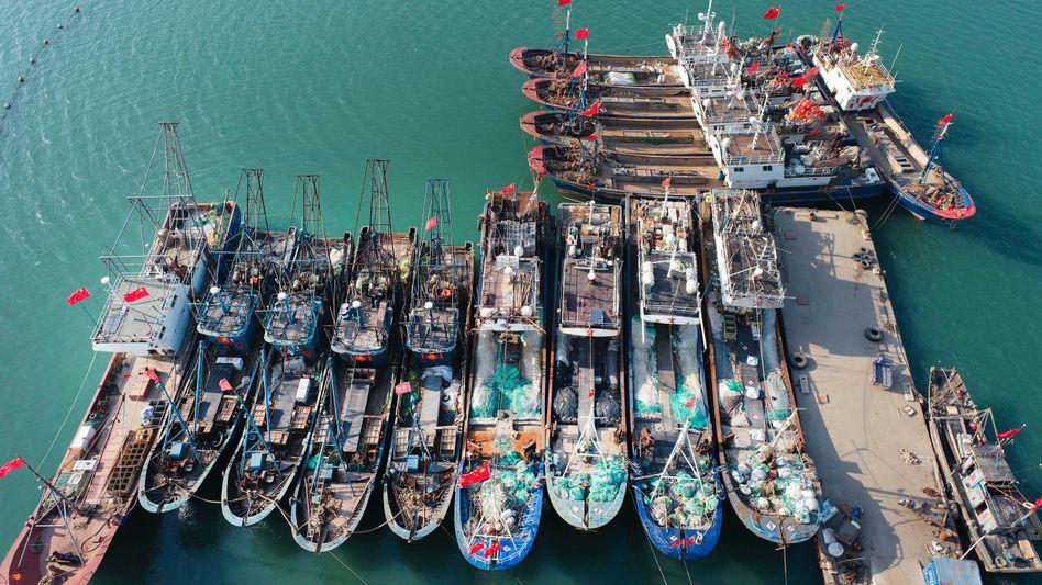 Boote im Hafen der chinesischen Stadt Lianyungang