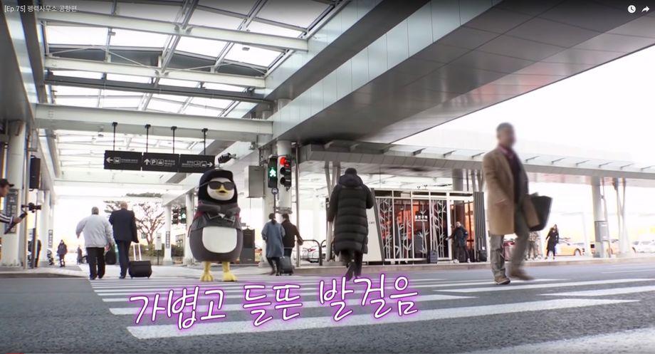 "Pengsoo am Flughafen: ""Das berühmteste Tier von Korea"""