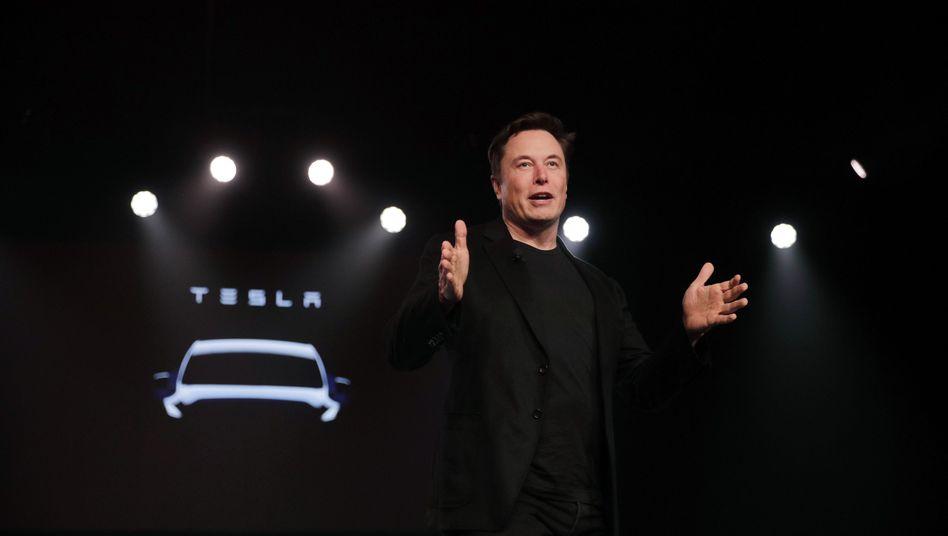 Tesla-Chef Musk