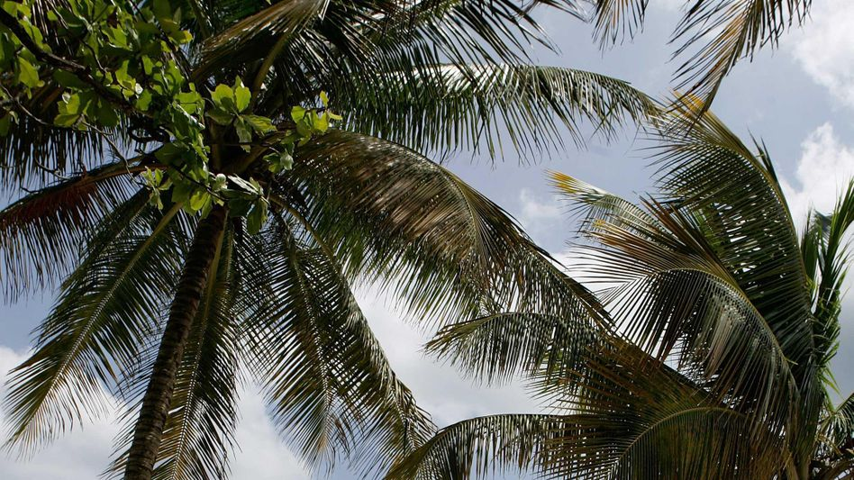 Urlauber in Puerto Rico: Ratingagenturen stufen die Insel als pleite ein