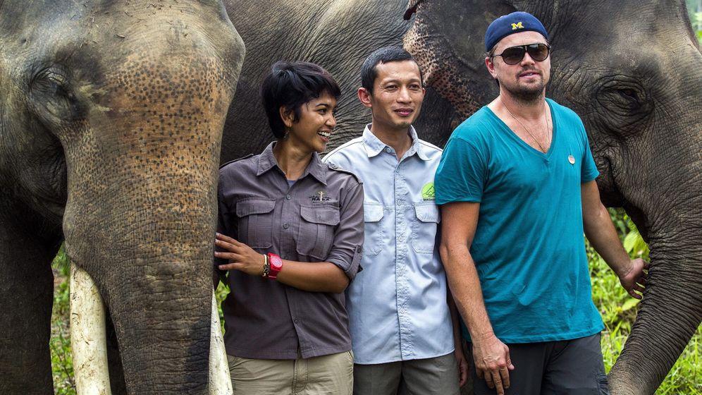 DiCaprio-Kritik in Indonesien: Leo im Orang-Utan-Wald