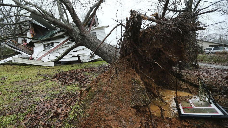 Umgestürzter Baum in Baldwyn, Mississippi: Mehrere Todesfälle und schwere Schäden