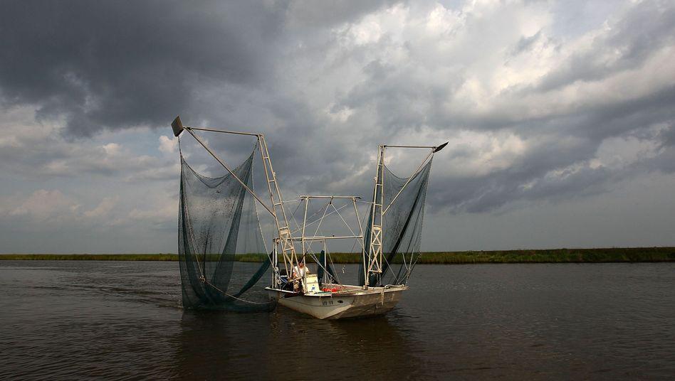 Shrimpfischer in Louisiana: Angst vor dem Öl unter der Wasseroberfläche