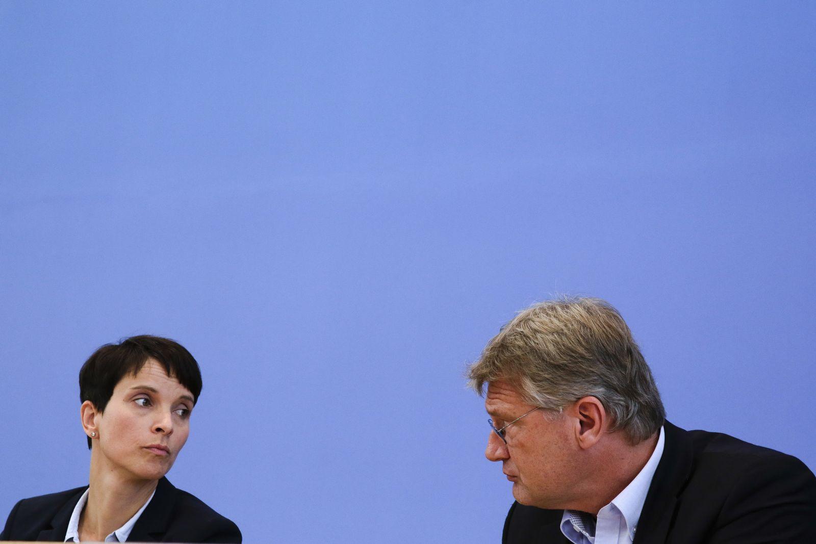 AfD / Frauke Petry / Joerg Meuthen