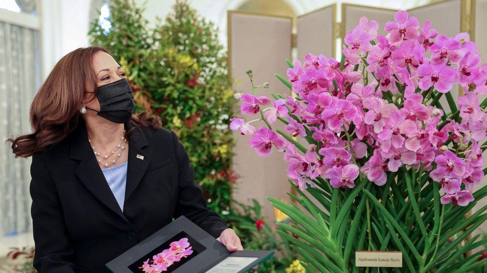 Kamala Harris: US-Vizepräsidentin – und offizielle Namenspatin einer Orchidee