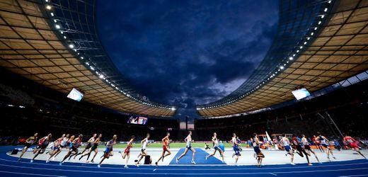 Olympia, Sanierungen, Missbrauch: Das sind die größten Aufgaben für den Sportausschuss im Bundestag