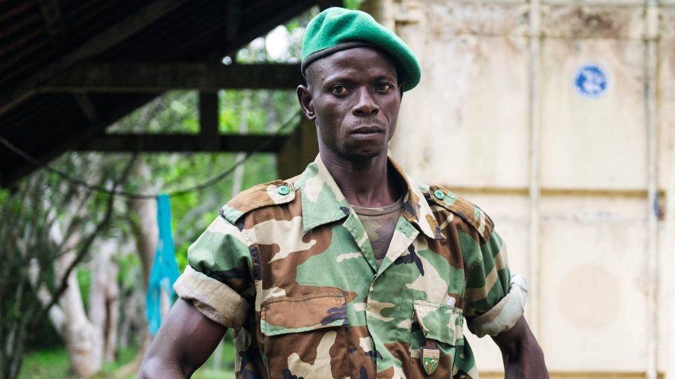 Wildhüter mit konfisziertem Elfenbein bei Bayanga in der Zentralafrikanischen Republik