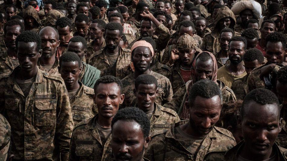 Von der TDF gefangen genommene Soldaten der äthiopischen Armee