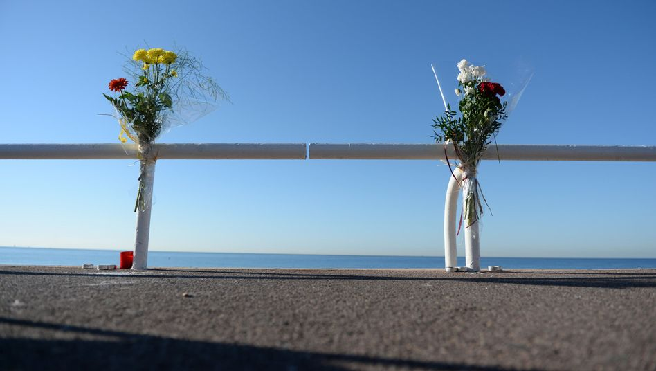 Blumen an der Promenade des Anglais