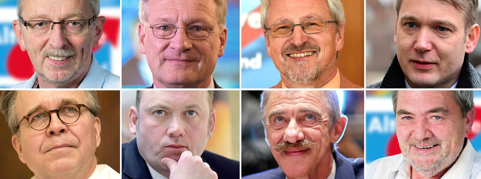 EINMALIGE VERWENDUNG Michael Frisch / Joerg Meuthen / Bernd Grimmer / Heinrich Fiechtner / Joachim Paul / Uwe Junge / Heribert Friedmann