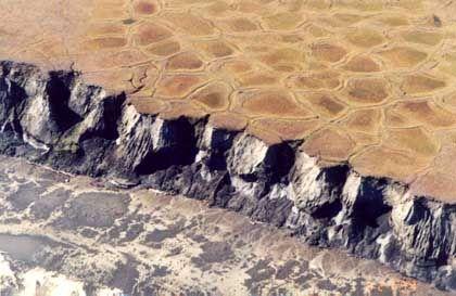 Permafrost-Landschaft im Osten Sibiriens: Tiefgefrorenes Erbgut