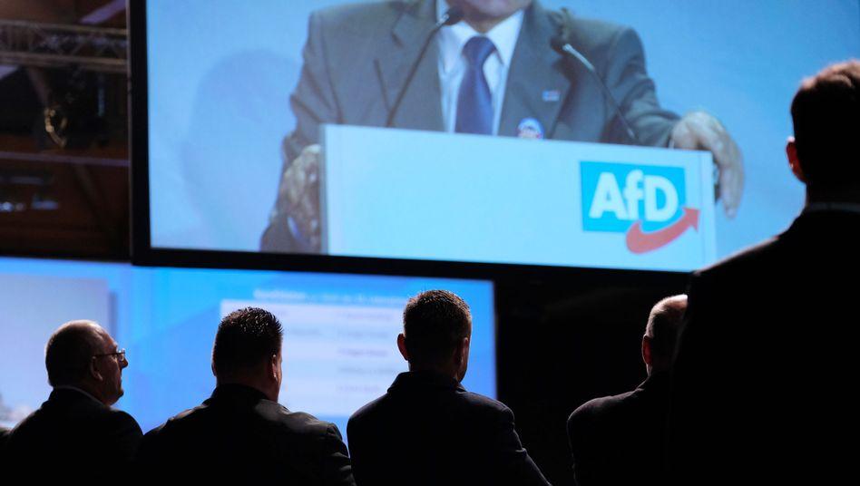 """AfD-Europawahlversammlung in Magdeburg (im Nov. 2018): """"Definitiv ein Hingucker"""""""