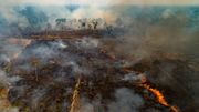 Brasiliens Regenwald brennt wie lange nicht mehr