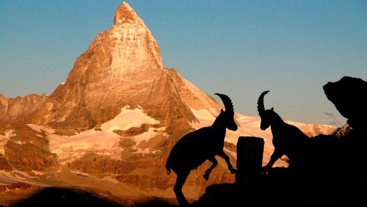 Matterhorn: Pilgertour zum schönsten Berg der Welt