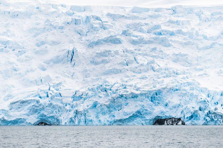 Antarktischer Gletscher auf King George Island