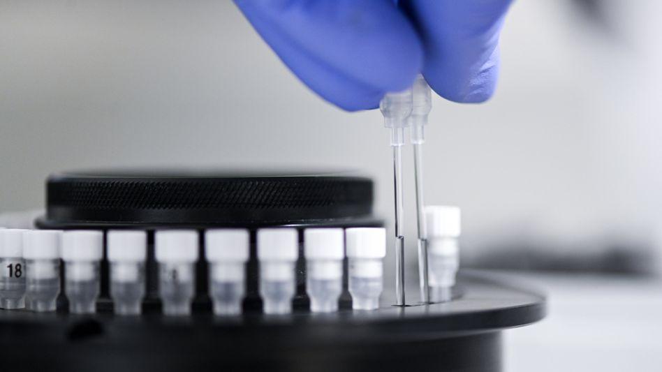 Proben werden in einem Labor für PCR-Tests vorbereitet (Archivbild)