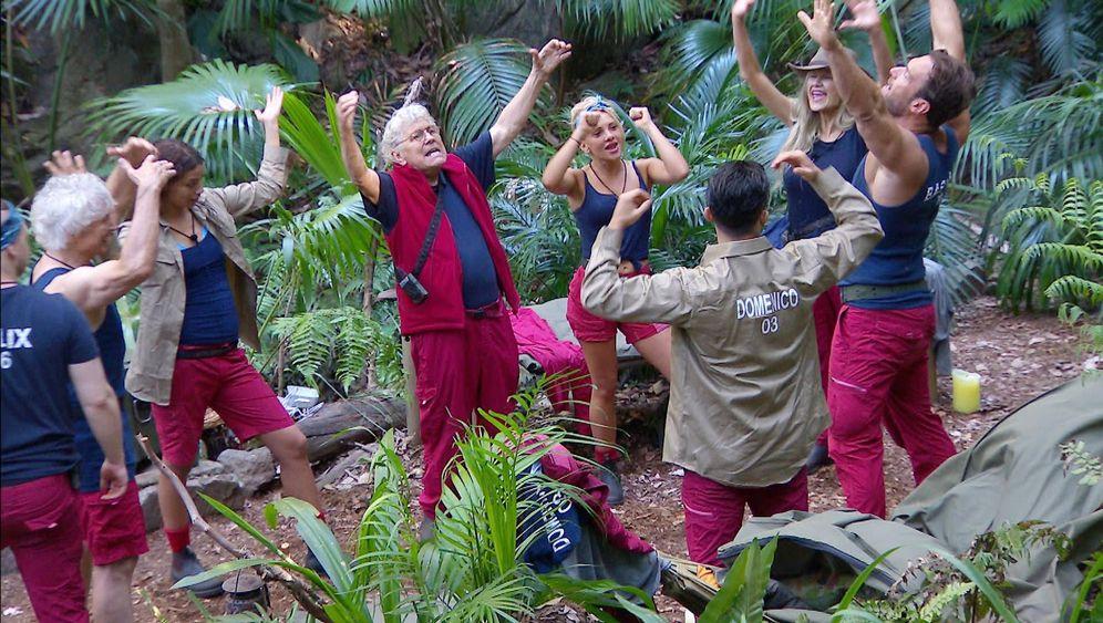 """Dschungelcamp, Tag 2: """"Oh mein Goooott!"""""""