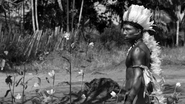 """Urwaldtrip """"Der Schamane und die Schlange"""": Verbrechen des Kolonialismus"""