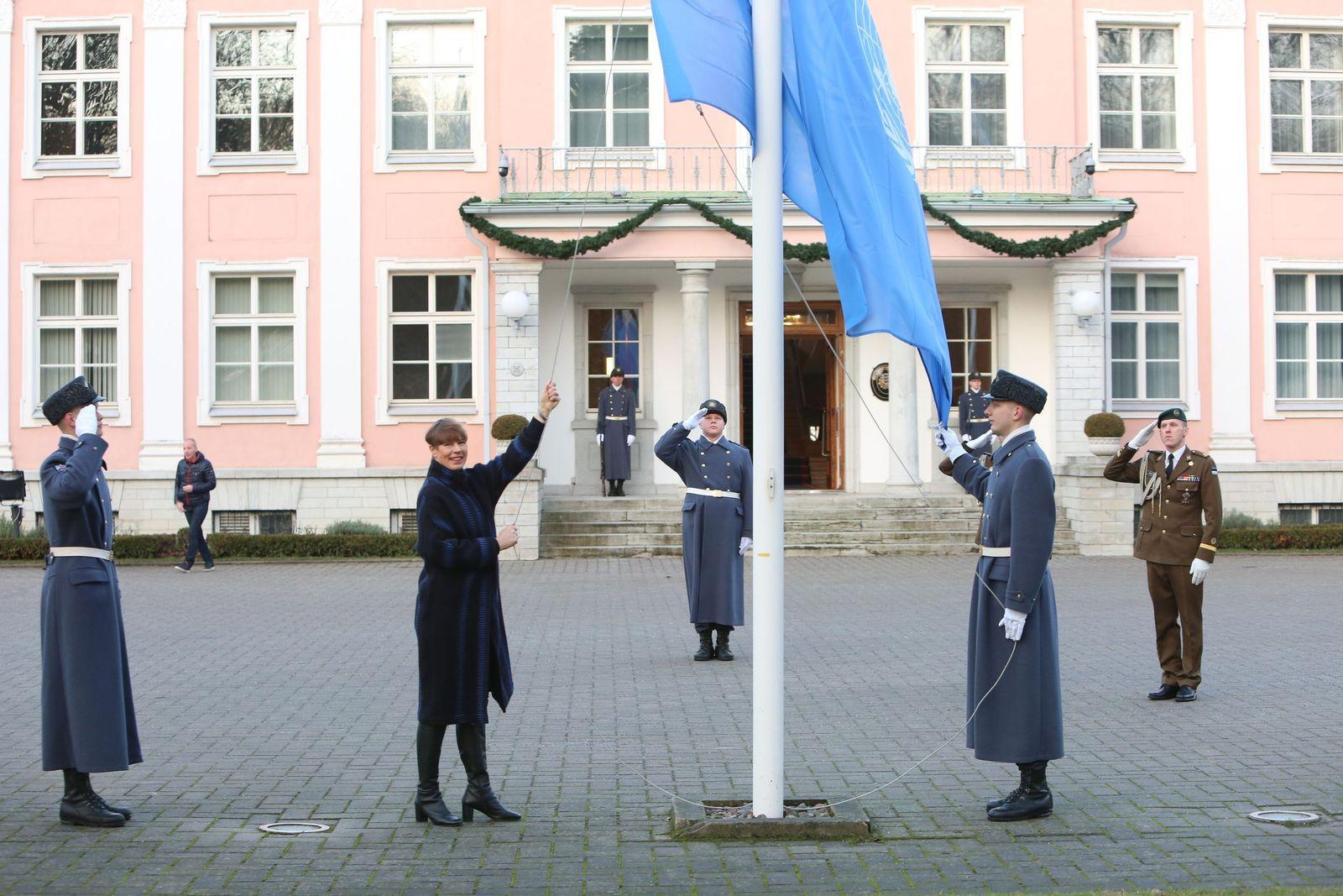 Estland UN-Sicherheitsrat