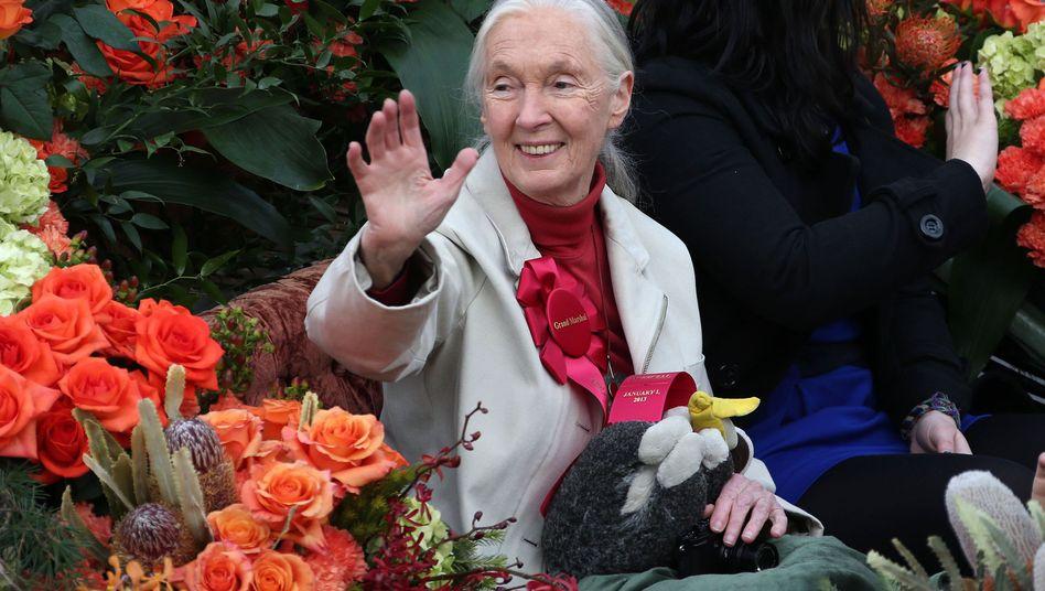 Jane Goodall bei der Rosenparade in Pasadena: Ein Leben lang Pflanzen geliebt