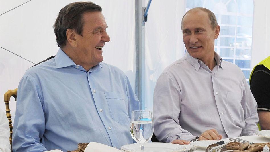 Gerhard Schröder und sein Freund Wladimir Putin (Archivbild von 2011): Seine Sache?