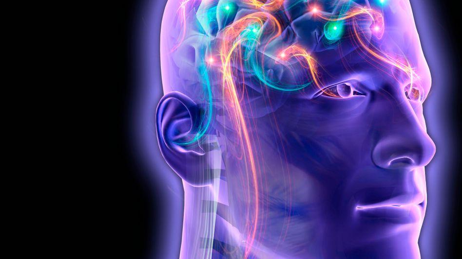 Was im Kopf passiert: Typisch männliche und weibliche Gehirne sind selten