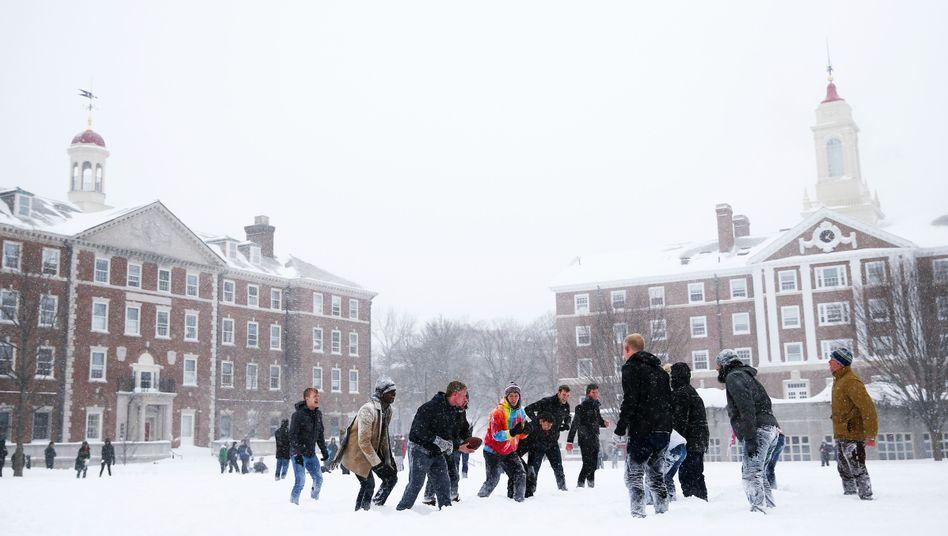 Studenten auf dem Harvard-Campus: 6700 Nichtgraduierte studieren an der Eliteuni