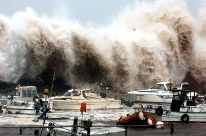 The wrath of Typhoon Tokage